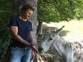 Verliebt wie ein Esel
